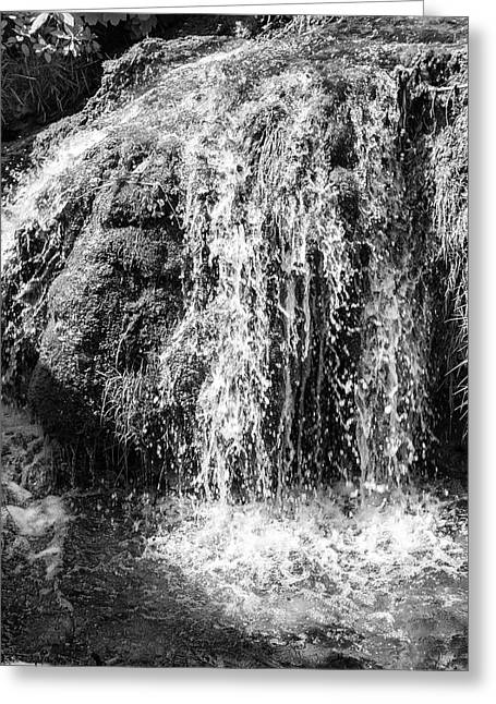 Fowler Park Greeting Cards - Cascade Greeting Card by Nomad Art And  Design