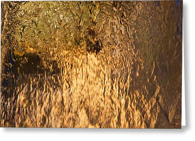 Cascade II Greeting Card by wDm Gallery