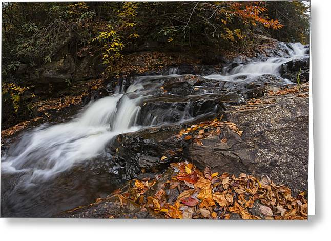 Stream Greeting Cards - Cascade of Color Greeting Card by Curt Fleenor