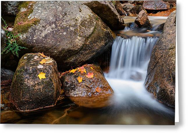 Jordan Photographs Greeting Cards - Cascade on Jordan Stream Greeting Card by Michael Blanchette
