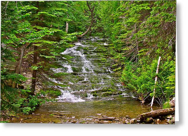 Qc Greeting Cards - Cascade over Mossy Rocks along La Chute Trail in Forillon NP-QC Greeting Card by Ruth Hager
