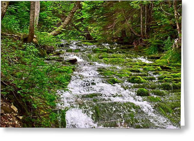 Qc Greeting Cards - Cascade over Mossy Rocks Two along La Chute Trail in Forillon NP-QC Greeting Card by Ruth Hager
