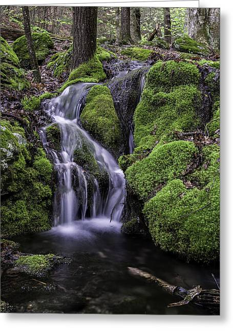 The Berkshires Greeting Cards - Cascades along Race Brook Greeting Card by Thomas Schoeller