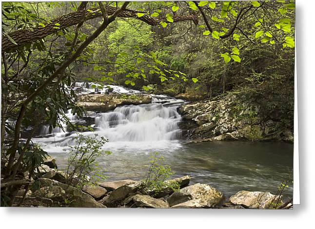Tn Greeting Cards - Cascades at Coker Creek Greeting Card by Debra and Dave Vanderlaan