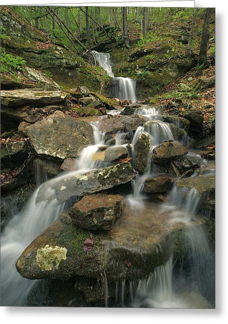 Cascading Creek Mulberry River Arkansas Greeting Card by Tim Fitzharris