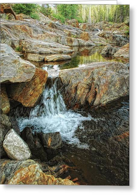 Riverbed Greeting Cards - Cascading Downward Greeting Card by Donna Blackhall