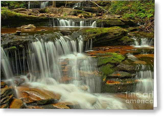 Moss Green Greeting Cards - Cascading Everywhere At Ricketts Glen Greeting Card by Adam Jewell