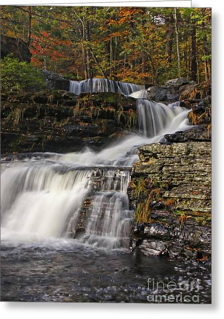 Marcia Lee Jones Greeting Cards - Cascading Forever Greeting Card by Marcia Lee Jones