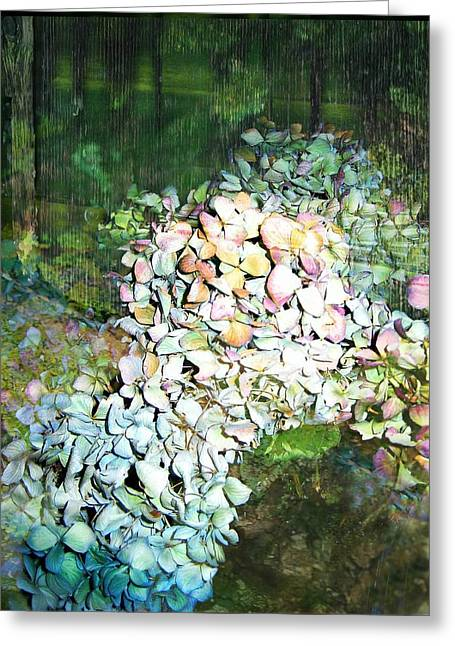 Light Blue Greeting Cards - Cascading Hydrangea Greeting Card by Shirley Sirois