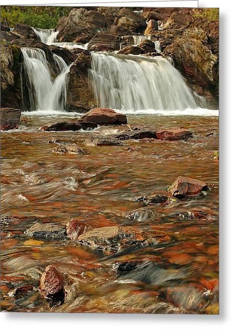 Swiftcurrent Falls Greeting Cards - Cascading Water Greeting Card by Sandy Sisti