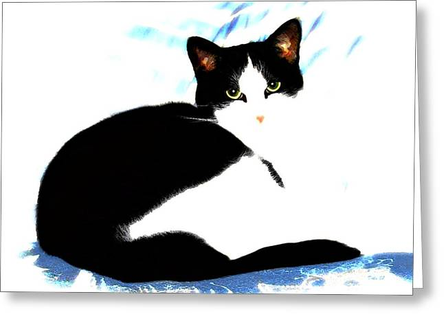 Felines Dale Ford Greeting Cards - Casey Greeting Card by Dale   Ford