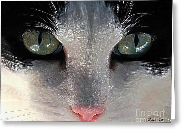 Photo Of Cat Greeting Cards - Casey Eyes Greeting Card by Dale   Ford