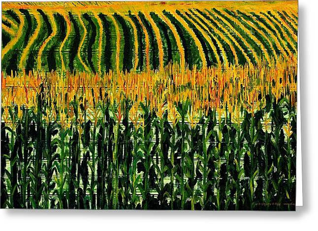 Gregory Allen Page Greeting Cards - Cash Crop Corn Greeting Card by Gregory Allen Page