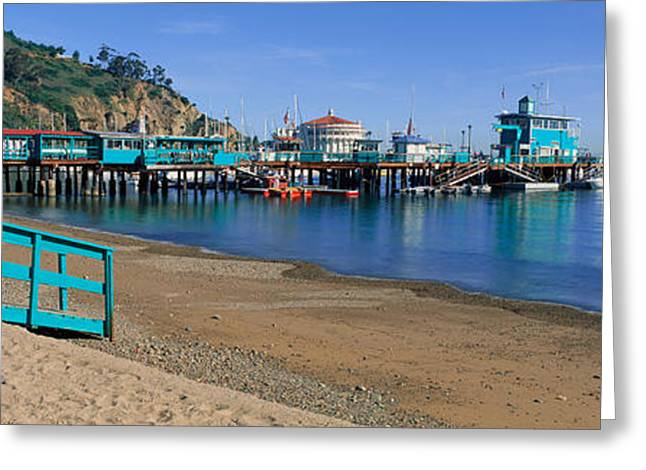 California Ocean Photography Greeting Cards - Casino Building And Avalon Harbor Greeting Card by Panoramic Images