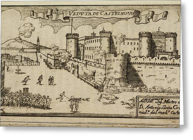 Castelnovo A Hilltop Fort Greeting Card by British Library