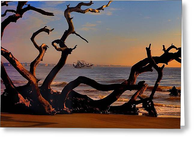 Tidal Photographs Greeting Cards - Casting Fate to the Water Greeting Card by Laura Ragland