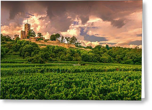 Grape Vineyard Greeting Cards - Castle and Vineyard Panorama - Germany Greeting Card by Mountain Dreams