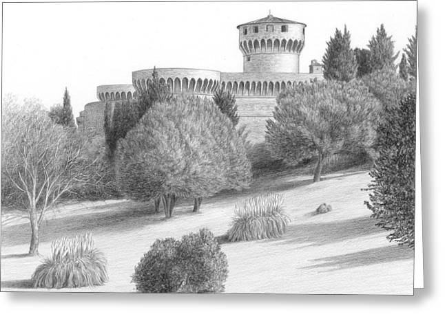 Pine Tree Drawings Greeting Cards - Castle at Volterra Greeting Card by Diane Cardaci
