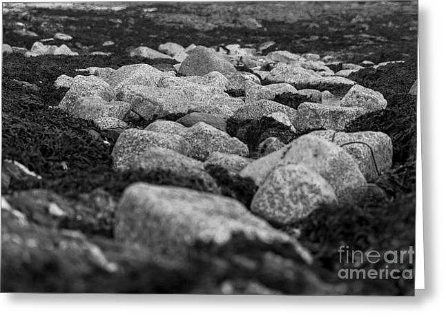 Abstract Seascape Photographs Greeting Cards - Castle Beach Rocks Greeting Card by Brian Roscorla
