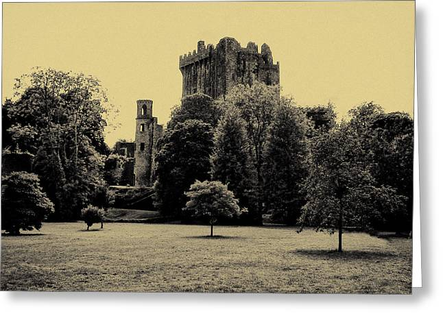 Castle Blarney Ireland Greeting Card by Bill Cannon