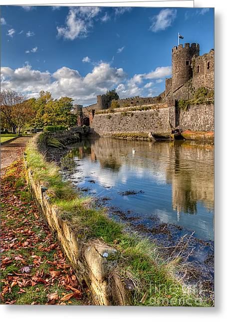 Swans... Greeting Cards - Castle Conwy Greeting Card by Adrian Evans