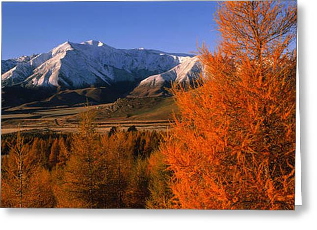 Snow Capped Greeting Cards - Castle Hill Basin Torlesse Mountains Greeting Card by Panoramic Images