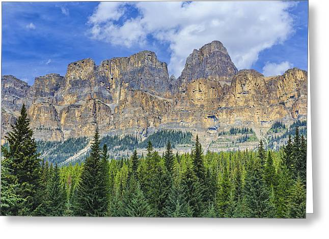 Pinaceae Greeting Cards - Castle Mountain And Coniferous Trees Greeting Card by Ken Gillespie