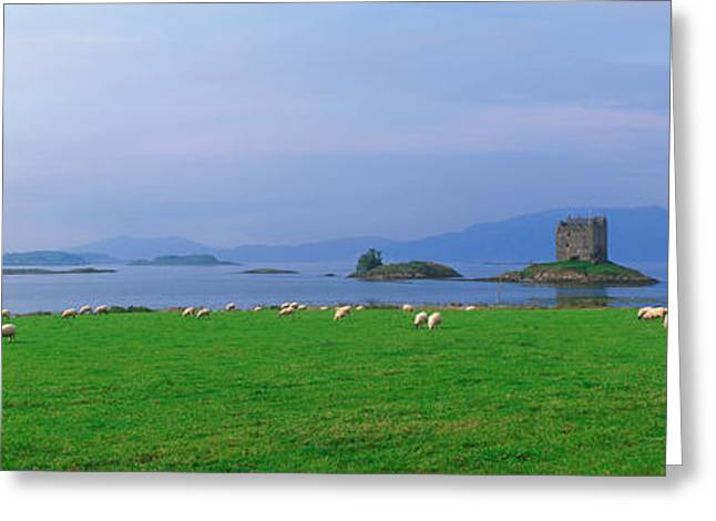Argyll Greeting Cards - Castle On An Island, Glencoe, Loch Greeting Card by Panoramic Images