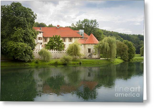 Forest Pyrography Greeting Cards - Castle Otocec Slovenia Greeting Card by Vyacheslav Isaev