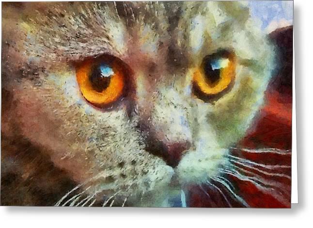 Hand Drawn Greeting Cards - Cat 2 Greeting Card by Victor Gladkiy