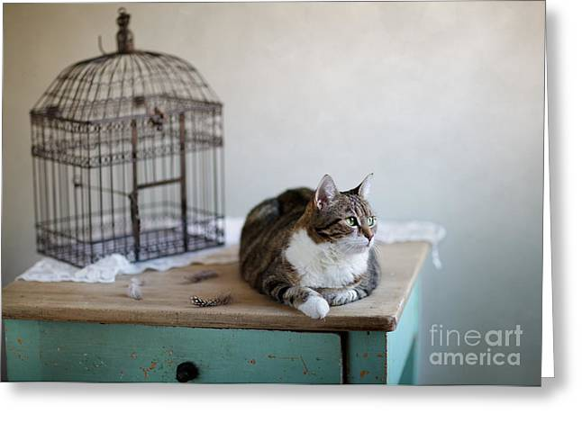 Gelb Greeting Cards - Cat and Bird Cage Greeting Card by Nailia Schwarz