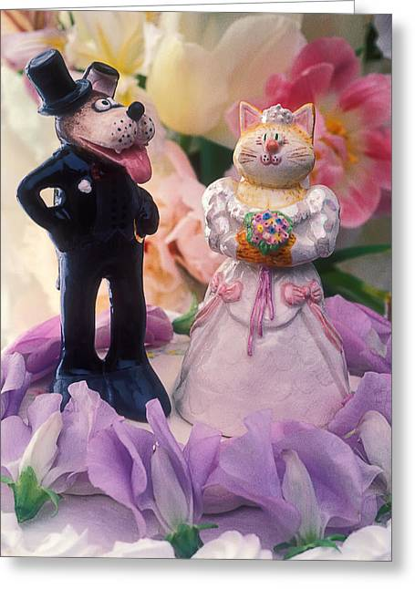 Cat Face Greeting Cards - Cat and dog bride and groom Greeting Card by Garry Gay