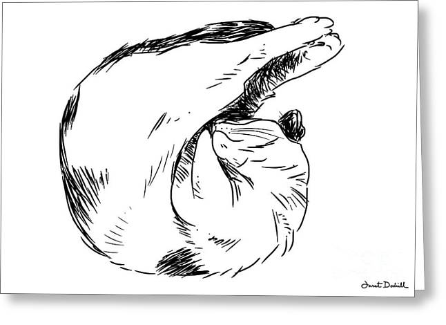 Tablets Drawings Greeting Cards - Cat Curl and Stretch Greeting Card by Janet Dodrill