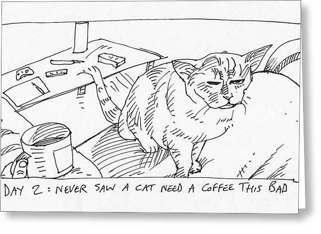 Funny Kitten Greeting Cards - Cat Day Morning Greeting Card by Steve Hunter