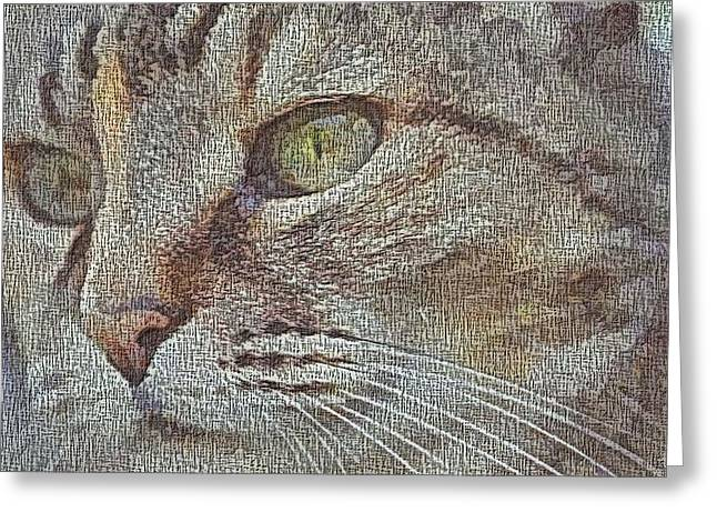 Mosaic Portraits Mixed Media Greeting Cards - Cat Eye Canvas Greeting Card by Dan Sproul