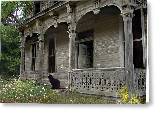 Haunted House Digital Greeting Cards - Cat House 1 Greeting Card by Tom Straub