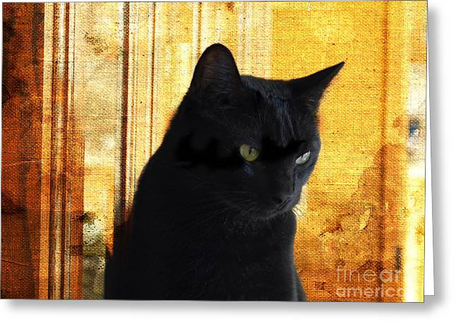Shelter Kitty Greeting Cards - Cat in Contemplative Mood Greeting Card by Luther   Fine Art