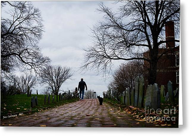 Graveyard Road Greeting Cards - Cat In The Copps Greeting Card by Jim  Calarese