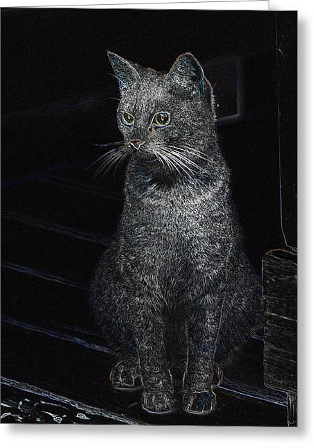 Gray Tapestries - Textiles Greeting Cards - Cat in the dark Greeting Card by Ruth Yvonne Ash