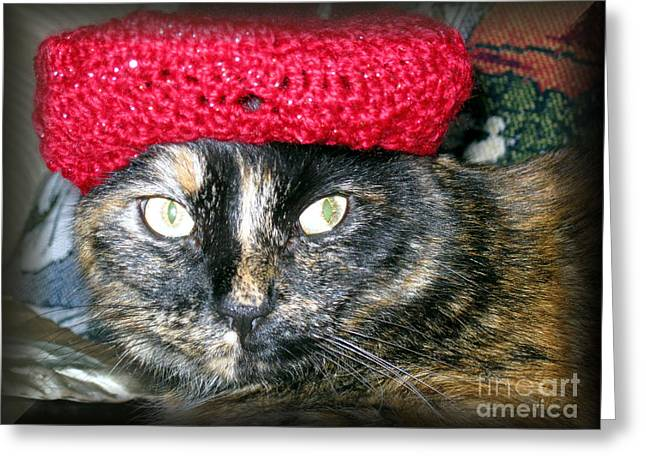 Cute Cat Pyrography Greeting Cards - Cat in the red hat Greeting Card by Oksana Semenchenko