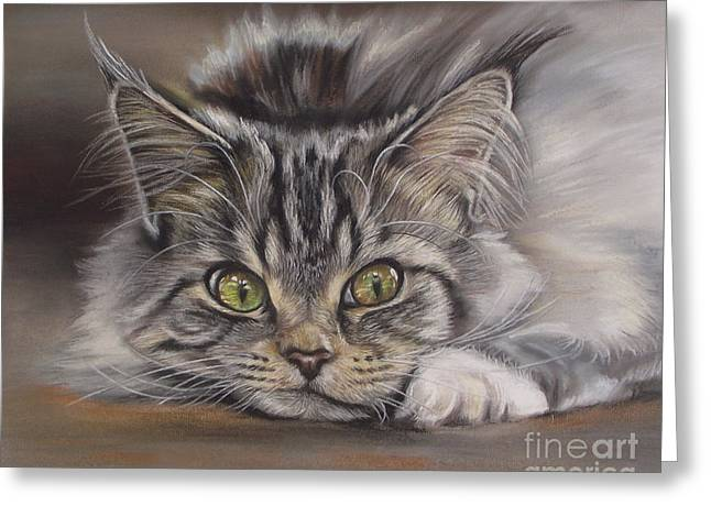 Pictures Of Cats Greeting Cards - Cat Greeting Card by Irisha Golovnina