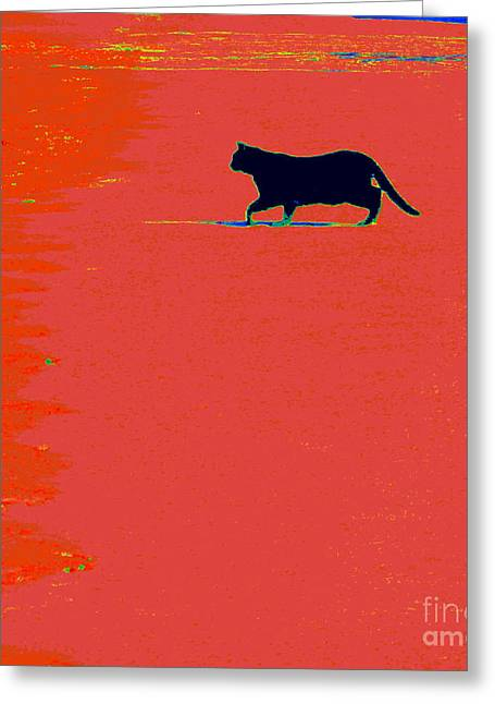 Cat Prints Photographs Greeting Cards - Cat On Lava Greeting Card by Joe Jake Pratt