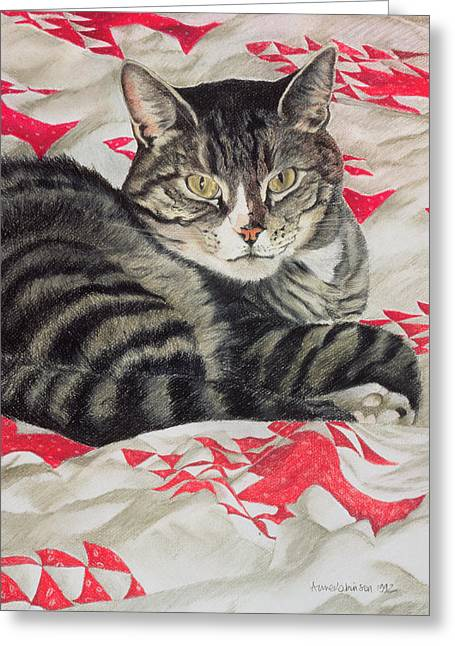 Cute Animal Portraits Greeting Cards - Cat on quilt  Greeting Card by Anne Robinson