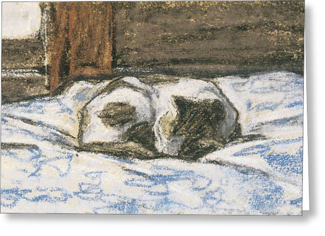Cat Sleeping Greeting Cards - Cat Sleeping on a Bed Greeting Card by Claude Monet
