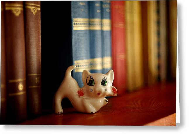 Content Learned Greeting Cards - Cat Trinket And Books Greeting Card by Ioan Panaite