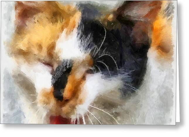 Hand Drawn Greeting Cards - Cat Greeting Card by Victor Gladkiy