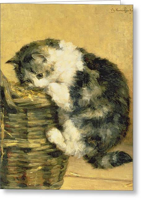 Small Cats Greeting Cards - Cat with a Basket Greeting Card by Charles Van Den Eycken