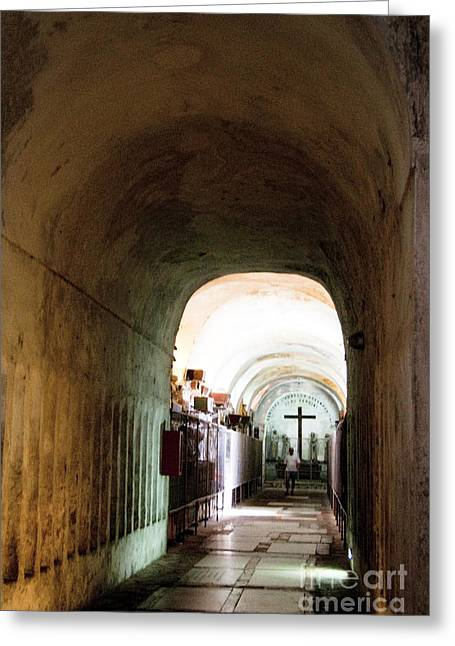 Sicily Greeting Cards - Catacombs in Palermo Greeting Card by David Smith