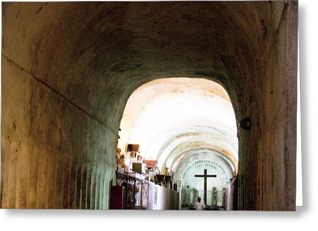Catacombs in Palermo Greeting Card by David Smith