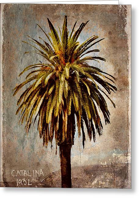Retro-montage Greeting Cards - Catalina 1932 Postcard Greeting Card by Carol Leigh